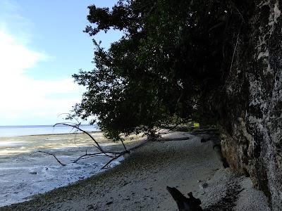 Pantai Sarawandori, Papua
