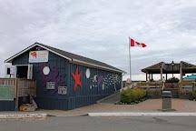 Discovery Passage Aquarium, Campbell River, Canada