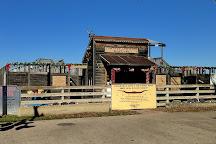 Cowtown Cattlepen Maze, Fort Worth, United States