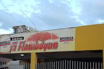 El Flamboyan, Luquillo, Puerto Rico