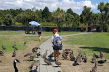 Nga Manu Nature Reserve, Waikanae, New Zealand