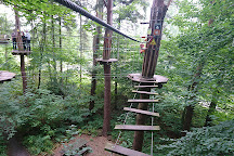 Go Ape Matfen, Matfen, United Kingdom