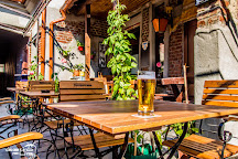 Gekko Pub, Oradea, Romania