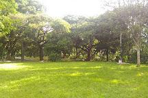 Parque da Independencia, Sao Paulo, Brazil