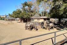 Barcelona Zoo, Barcelona, Spain