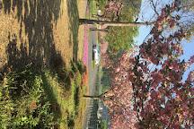 Nakanoshima Park, Wakasa-cho, Japan
