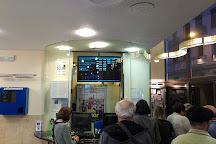 Renoir Plaza de Espana Cinema, Madrid, Spain