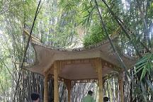 South China Botanical Garden, Guangzhou, China