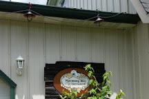 Harmony Hill Vineyard, Bethel, United States