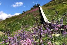 Giardino Botanico Alpino Chanousia, La Thuile, Italy