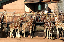 Cheyenne Mountain Zoo, Colorado Springs, United States