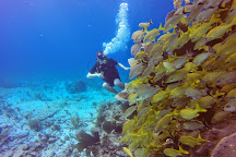 Blue Dive Cancun, Cancun, Mexico