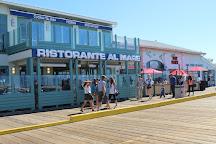 Santa Monica Pier, Santa Monica, United States