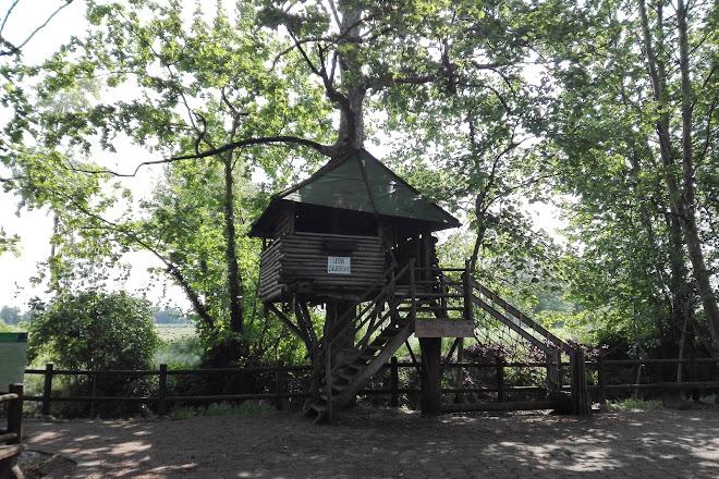 Visit Laghetto Hobbit On Your Trip To Bergamo Or Italy