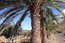 Finca Canarias Aloe Vera, Fataga, Spain