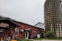 Vermont Farm Tours, Burlington, United States