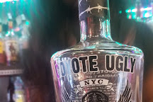 Coyote Ugly, New York City, United States