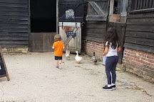 Wimpole Home Farm, Arrington, United Kingdom