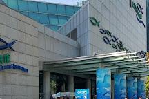 Shanghai Ocean Aquarium, Shanghai, China