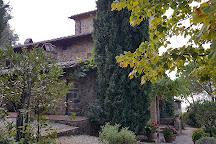 Mate Winery, Montalcino, Italy