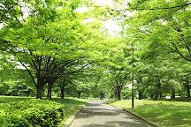 Kameido Chuo Park, Koto, Japan