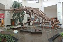 Museo Paleontologico Egidio Feruglio, Trelew, Argentina