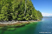 Archipelago Wildlife Cruises, Ucluelet, Canada