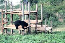 Bear Sanctuary Ninh Binh, Ky Phu, Vietnam