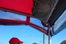 Islander Cruises, Lord Howe Island, Australia