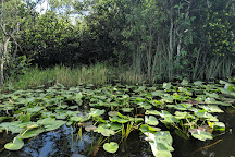 Everglades Adventure Tours, Ochopee, United States