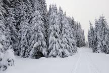 Balu Adventure Park, Harghita Bai, Romania
