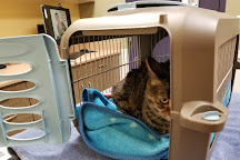 Humane Society of Boulder Valley, Boulder, United States