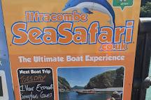 Ilfracombe Sea Safari, Ilfracombe, United Kingdom