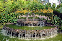 National Orchid Garden, Singapore, Singapore