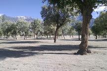 Katpana Desert (Cold Desert), Skardu, Pakistan