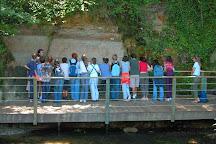 Reserve Naturelle Geologique de Saucats La Brede, Saucats, France