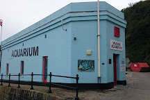 Mevagissey Aquarium, Mevagissey, United Kingdom
