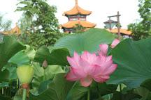 Chinese Garden Enchoen, Yurihama-cho, Japan