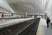 Gare de Liege-Guillemins, Liege, Belgium