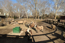 Queens Zoo, Flushing, United States