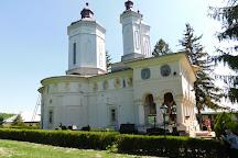 Ciolanu Monastery, Magura, Romania