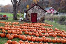 Trauger's Farm Market, Kintnersville, United States