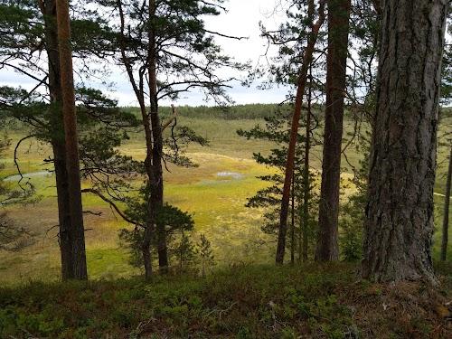 Majakivi - Pikanõmme matkarada