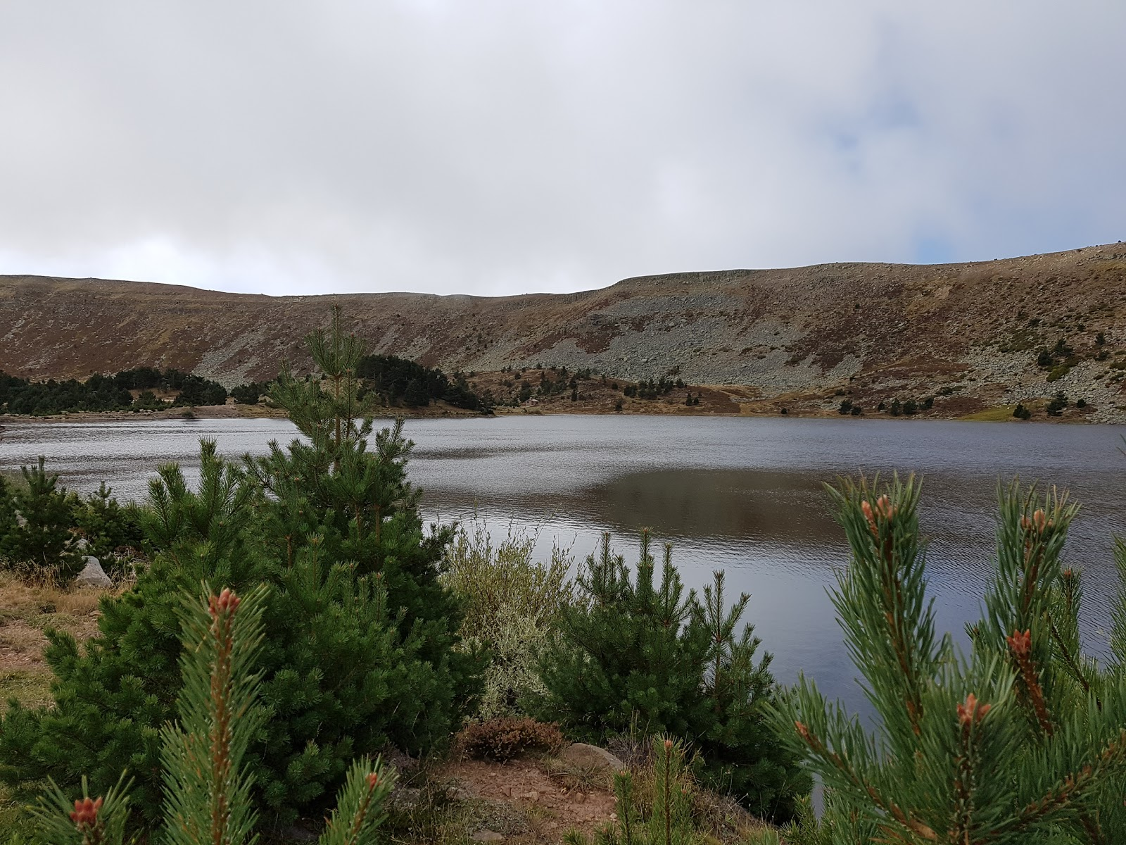 Quintanar de la Sierra