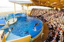Enoshima Aquarium, Fujisawa, Japan