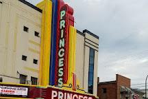 Princess Theatre, Decatur, United States
