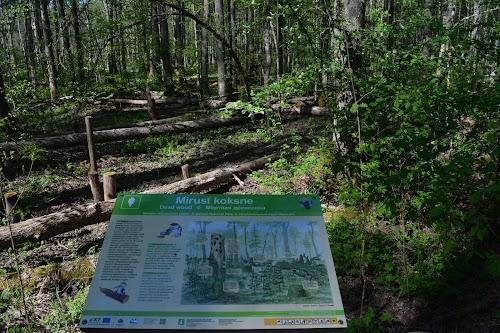Ķemeru nacionālā parka fonds