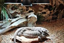 Reptile House De Aarde Breda, Breda, The Netherlands