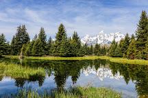 Jackson Hole EcoTour Adventures, Jackson, United States