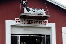 Phil's Berry Farm, Miami, United States